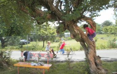 školní rok 2011 - 2012 - dětský den 2012 51 380x240