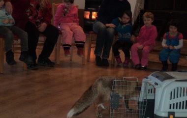 liška Mia - podzimníčci vánoční besídka 135 380x240
