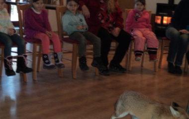 liška Mia - podzimníčci vánoční besídka 136 380x240