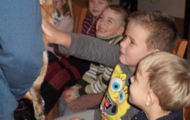 liška Mia - podzimníčci vánoční besídka 142 380x240