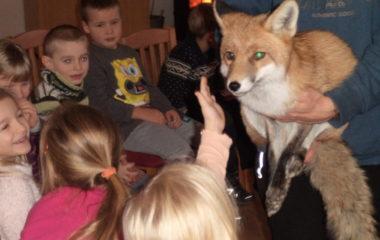 liška Mia - podzimníčci vánoční besídka 143 380x240