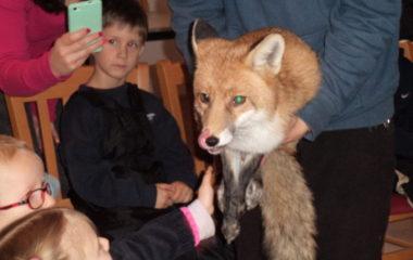 liška Mia - podzimníčci vánoční besídka 145 380x240
