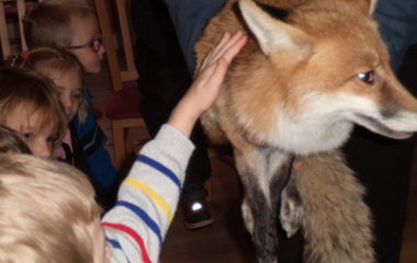 liška Mia - podzimníčci vánoční besídka 146 380x240