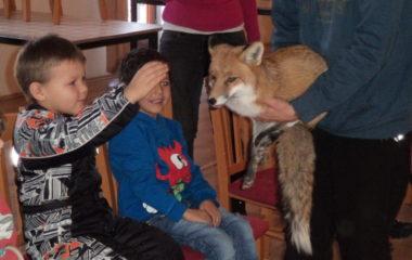 liška Mia - podzimníčci vánoční besídka 148 380x240