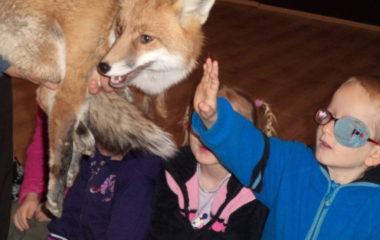 liška Mia - podzimníčci vánoční besídka 156 380x240