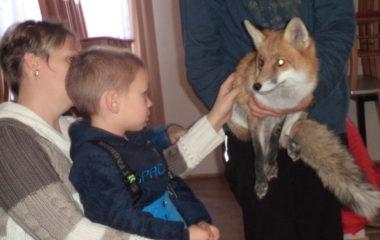 liška Mia - podzimníčci vánoční besídka 173 380x240