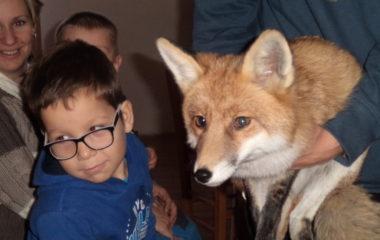 liška Mia - podzimníčci vánoční besídka 174 380x240
