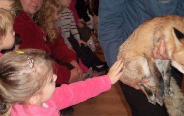 liška Mia - podzimníčci vánoční besídka 180 380x240