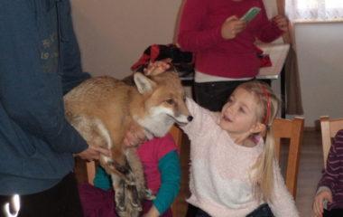 liška Mia - podzimníčci vánoční besídka 189 380x240