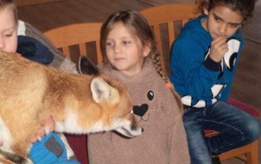 liška Mia - podzimníčci vánoční besídka 193 380x240