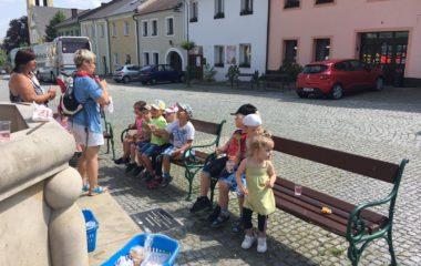 školní rok 2018 - 2019 - náš společný výlet - Hradec nad Moravicí - IMG 20190612 WA0142 1 380x240